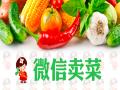 微信也能卖菜,生鲜行业移动互联网案例
